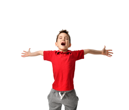 Young boy kid in red polo t-shirt celebrating happy smiling laughing with hands spreading isolated on white background Imagens