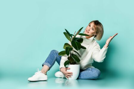 Young blonde woman in sweater, jeans and sneakers sits on floor holding ficus in pot with one hand and the other up showing the direction over blue background with copy space