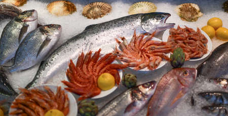 Fresh tasty seafood fish, trout, shrimps, sea scallop shells on ice decorated with lemon on fish shop market counter