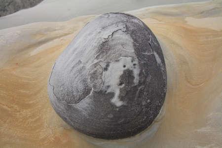 concretion: Concretion