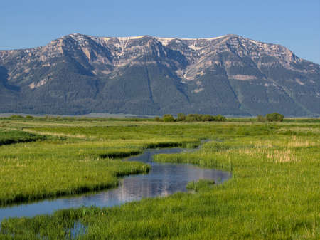 refuge: Culver Creek, Red Rock Lakes National Wildlife Refuge Stock Photo