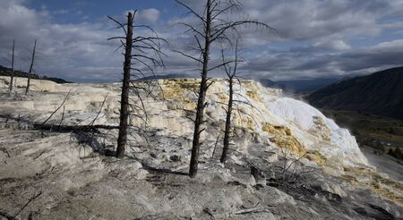 hydrothermal: Canary Spring