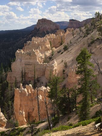 overlook: Sheep Creek-Swamp Canyon Overlook