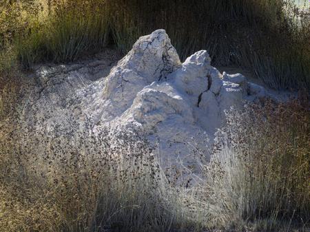 Mud Cones at West Thumb Geyser Basin