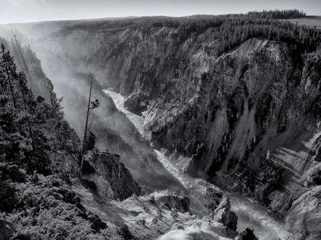 yellowstone: Yellowstone Canyon