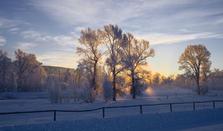 idaho: Swan Valley, Idaho