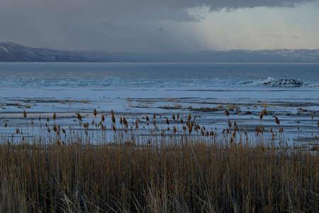 Bear Lake Фото со стока
