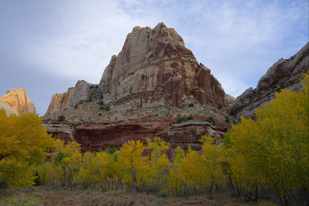 Fall in Capitol Reef National Park