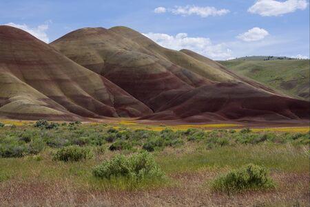 Painted Hills Фото со стока - 79082282
