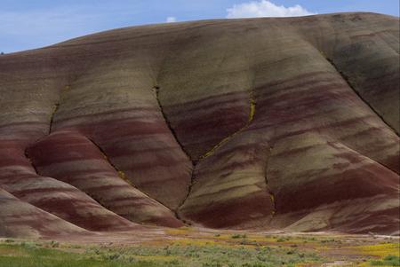 Painted Hills Фото со стока - 79082283