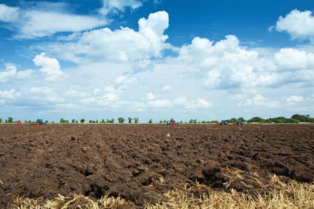plowing: arable land