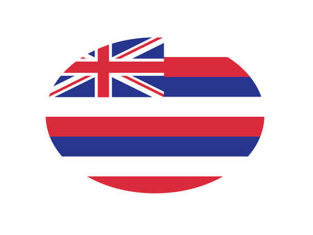 Hawaii flag oval circle vector illustration
