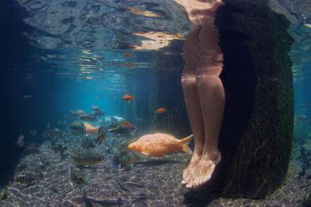 peces: Cuadro subacuático de piernas de mujer joven de relax en la piscina spa con peces koi de oro de natación en agua azul fresca. Fondo del estanque del jardín, la gente del estilo de vida, viaja en Asia y Bali de vacaciones de verano.