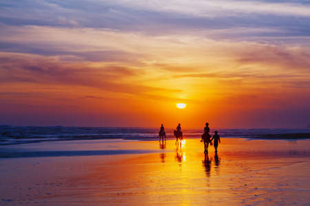 beach animals: Black silhouette of happy family having horse riding adventure on sand sea beach on background of sunset sky. Active parents and people outdoor activity on tropical summer vacations with children.