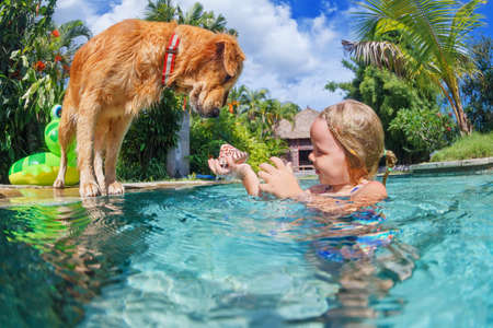 retrieve: Little child play with fun and train golden labrador retriever puppy in swimming pool - jump and dive underwater to retrieve shell. Active games with family pets and popular dog breeds like companion. Stock Photo