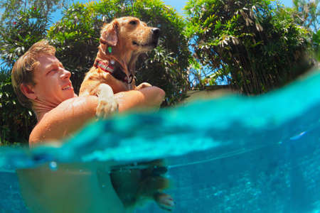 Young man play with fun and train golden labrador retriever puppy in swimming pool - jump and dive underwater. Funny games with family pets and popular dog breeds like companion.