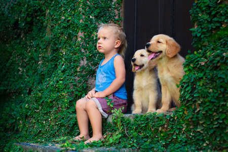 Funny photo of happy baby boy sitting with two golden labrador retriever puppies, play together. Family lifestyle, training dog. Positive emotions of children fun game with home pet on summer vacation Stock Photo