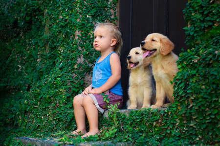 Lustige Foto von glücklichen Baby Junge sitzt mit zwei goldenen Labrador Retriever Welpen, spielen zusammen. Familienlebensstil, Trainingshund. Positive Emotionen von Kindern Spaß Spiel mit Haus Haustier auf Sommerferien Standard-Bild - 78035290