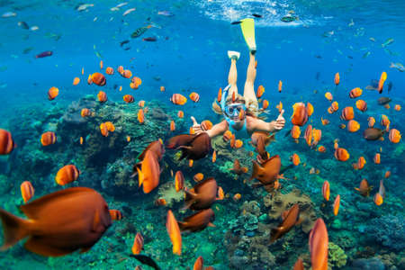 adventure holiday: Happy family - girl in snorkeling mask dive underwater with tropical fishes in coral reef sea pool. Travel lifestyle, water sport outdoor adventure, swimming lessons on summer beach holiday with child