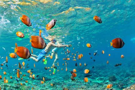 幸せな家族 - いくつかのシュノーケ リング マスクでダイビング深い水中サンゴ礁の海水プールで熱帯の魚。旅行のライフ スタイル、屋外のウォー