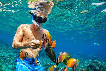 Gelukkige familie vakantie - man in snorkelen masker duiken onder water met tropische vissen in koraalrif zee zwembad. Reis lifestyle, watersport outdoor avontuur, zwemlessen op zomervakantie Stockfoto