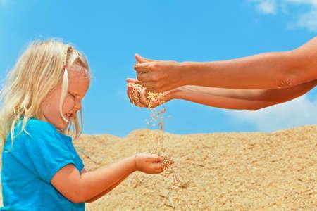 Familieplantage op het land met kinderen. Het gelukkige kind met moeder zit op hoop van het gewas van landbouwbedrijfkorrels. Rijstzaden die door de vingers van de vrouwenhand zeven. Landbouw, graangewassen, onbewerkte voedselingrediënten.