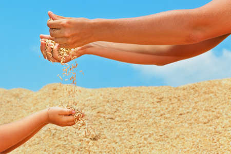 Happy child with mother on heap of plantation grains crop. Fresh rice seeds sifting through woman hand fingers. Agriculture, cereal plants, raw food ingredients. Products of Asian export background. Banco de Imagens