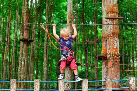 Brave young child in safety harness climb high on tree tops, pass hanging bridge obstacle in adventure rope park. Outdoor activity,  active lifestyle in summer scout camp on family holidays with kids