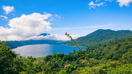 Beautiful view of Danau Buyan lake, popular tourist place - Bedugul village in tropical mountain rainforest. Summer vacation travel destinations, culture, nature of tropical Bali island, Indonesia.