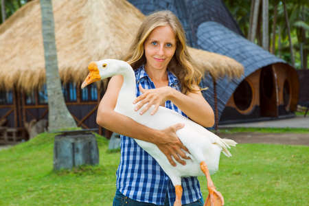 Young happy woman hold in hands funny farm pet - big white domestic goose. Day tour on family summer holidays with kids. Popular travel destination, tourist attraction in tropical Bali island
