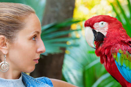 Face portrait of young girl looking at red macaw parrot. Side view of wild ara parrot head on jungle background. Wildlife watching safari, rainforest fauna, exotic tropical birds as popular pet breeds