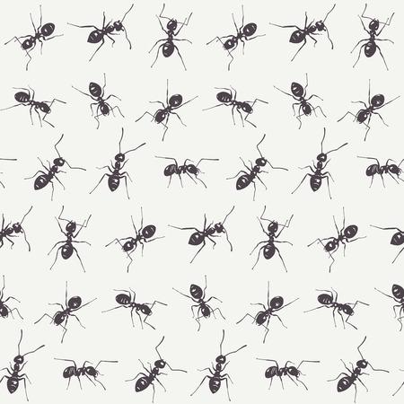 ant: Grupo de hormigas negras aisladas sobre un fondo blanco. Modelo inconsútil del vector