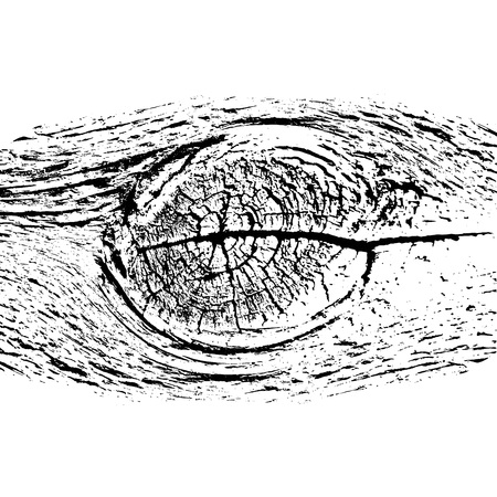 Weathered wood texture. Cross section of a tree trunk  イラスト・ベクター素材