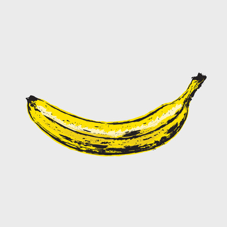 Hand drawn ripe banana. Vector illustration of fruit