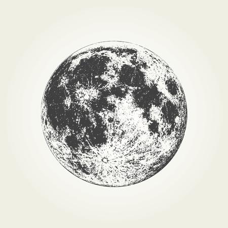 Luna piena realistica. Illustrazione vettoriale monocromatica dettagliata Vettoriali