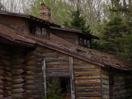 Abandoned cabin in the forest