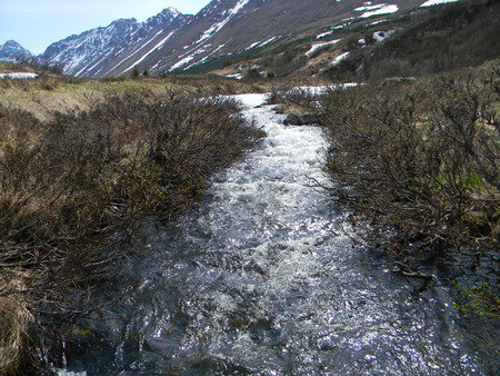 Raging spring stream in the mountains