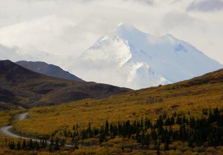mckinley: Mt. McKinley (Denali) in the background of the Alaskan tundra