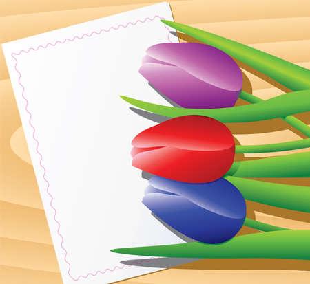 Vector tulips Stock Vector - 4615128
