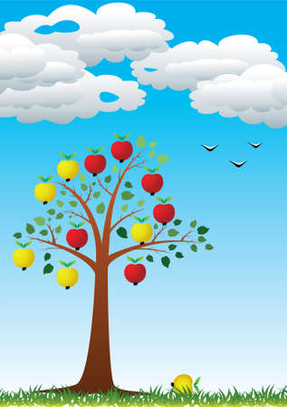 vector apple tree with fruits Vector