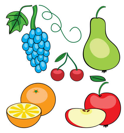 vector set of different fruits Vector