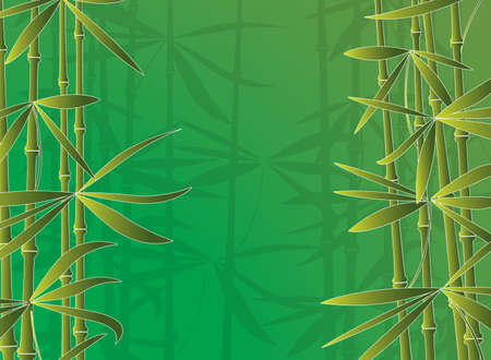 vector illustration of bamboo forest Vector
