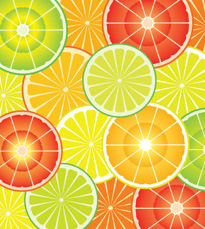 vector citrus slices of different shapes and colors  Vector