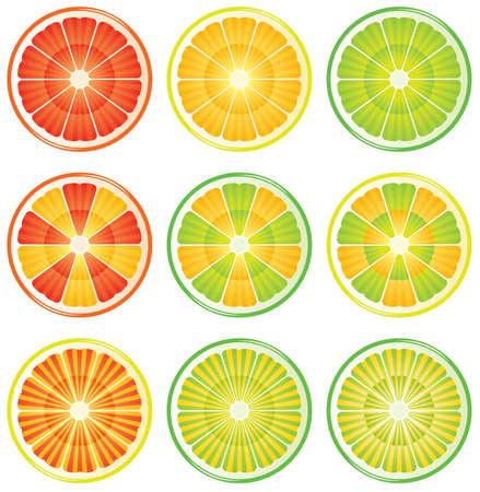 grapefruit juice: nine variants of citrus slices  Illustration