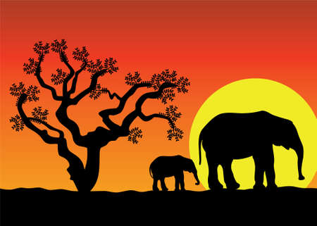 illustration of elephants in africa Vector
