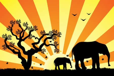 two elephants on retro background Vector