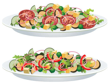vector vegetable salads on a plate Vector