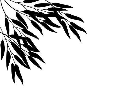 black and white forest: Bamboo, vector illustration  Illustration