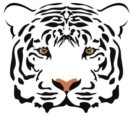 tigres: cabeza de tigre de vector