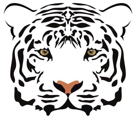 human head faces: vector tiger head Illustration